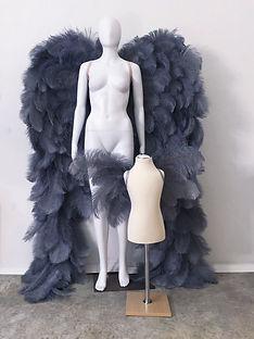 WingsDuo.jpg