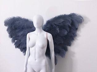 WingsGreyS.jpg