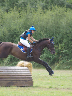 concours complet équitation, massage cheval de sport, massage équin france, massage cheval sud-ouest