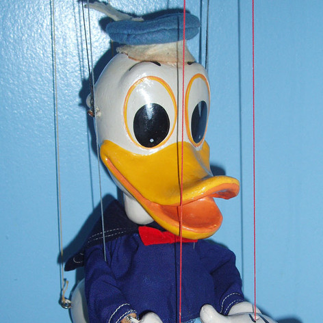 SL Donald Duck