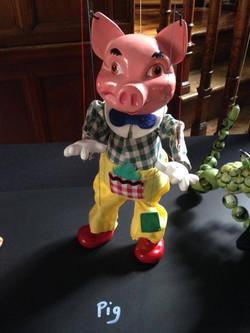 SL Pig