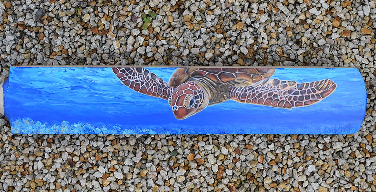 Carole Elliott's painted cricket bat