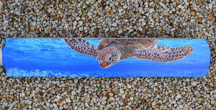 Carole Elliott's painted cricket bat