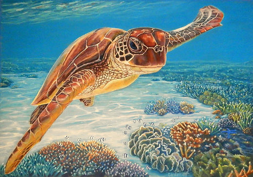 A beautiful sea turtle from the lagoon of Lady Elliot Island painted in pastels by Carole Elliott