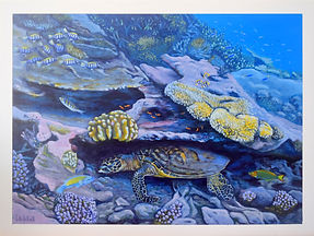 Sea turtle painting of an endangered hawksbill turtle from Lady Elliot Island by Carole Elliott