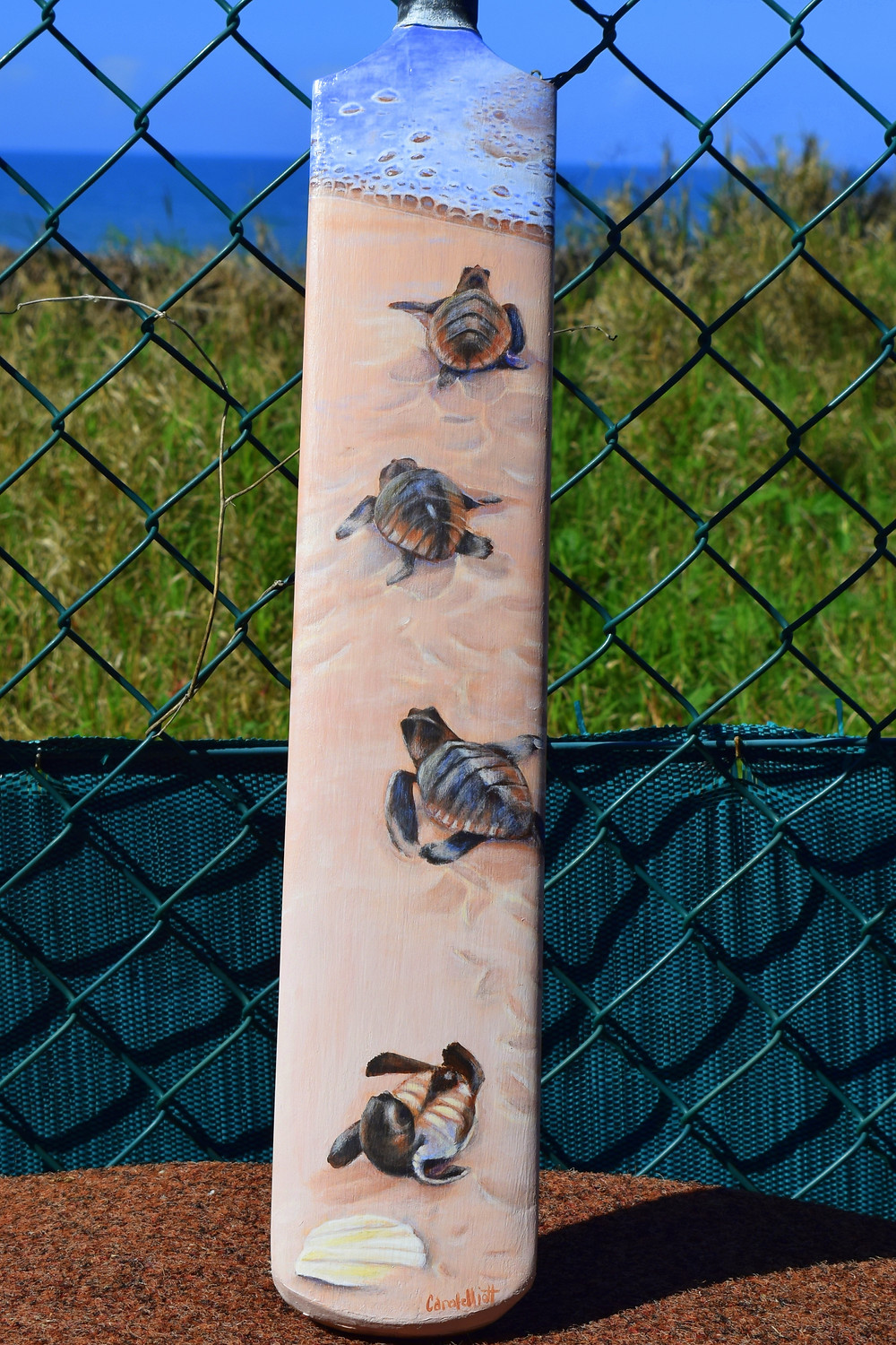 Bowled Over - painted cricket bat by Carole Elliott