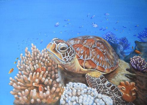Turtle on the Great Barrier Reef by Carole Elliott Artist