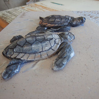 sculptural artwork by Carole Elliott showing 3D turtle hatchlings
