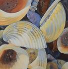 shells2-WIP6.JPG