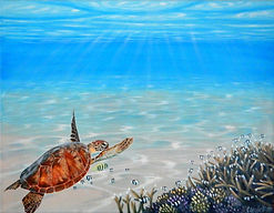 Sea turtle painting by Carole Elliott