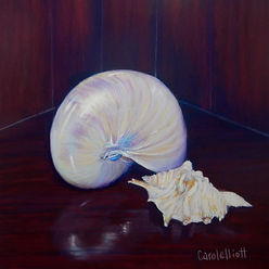 Still life painting of shells in soft pastel by Carole Elliott Artist