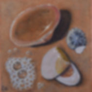 Carole Elliott's miniature shells