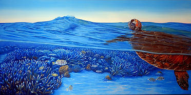 A beautiful painting of a sea turtle from the lagoon of Lady Elliot Island by Carole Elliott