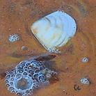 shell&seaweed2 - WIP3.JPG