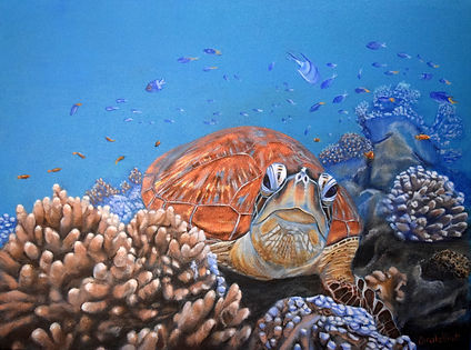 Turtle painting by Carole Elliott donated to Ocean Artists Society