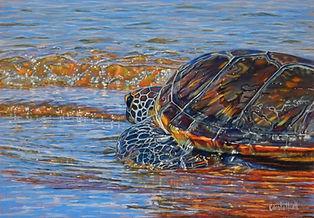 Sea Turtle painting by Carole Elliott Artist