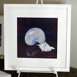 Still life of shells by Carole Elliott Artist