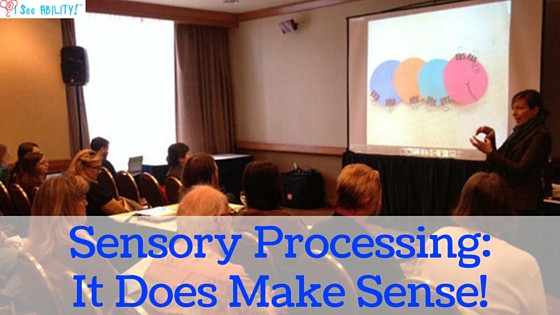 Sensory Processing Training: I Provide Understanding and Solutions