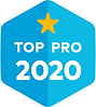 top pro 2020 (1).png