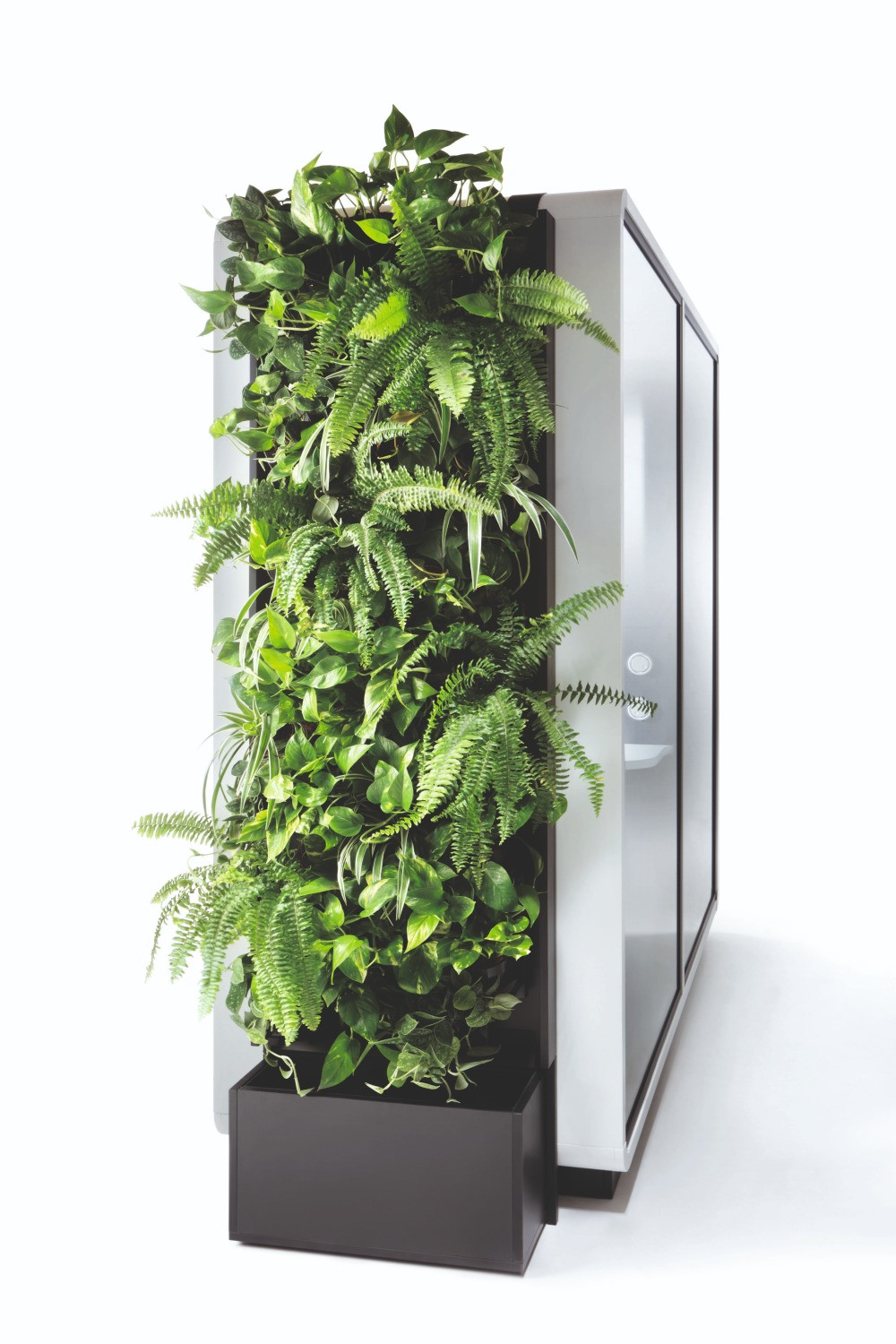 The Hush Green Wall is available in a variety of options.
