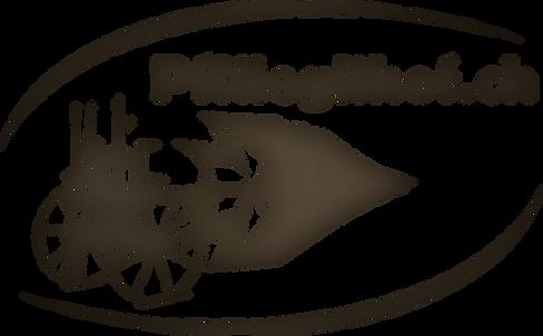 Pflüeglihof_ch_grün (3).png
