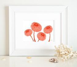JARDINE RED FLOWERS-01