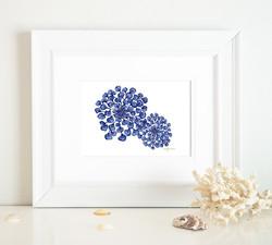 JARDINE BLUE SPRAY-01
