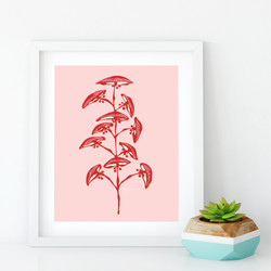 PINK ASIAN FLORAL-01