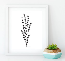PUSSY WILLOW FRAMED-01