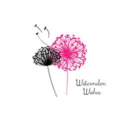 Watermelon-Wishes