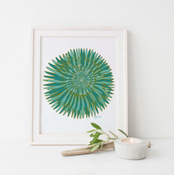 TURQUOISE PIN FLOWER