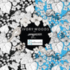 IVORY WOODS-AMYREBER-A1 B1 C1-01.jpg