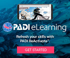 eLearning_ReActivate_divers_bnrs300x250.