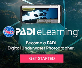 eLearning_DUP_divers_bnrs300x250.jpg