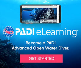 eLearning_AOW_divers_300x250.jpg