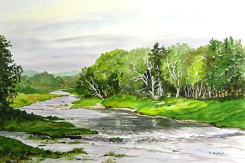 Summer on the St. Mary's River- Original Painting | Pat Shattuck