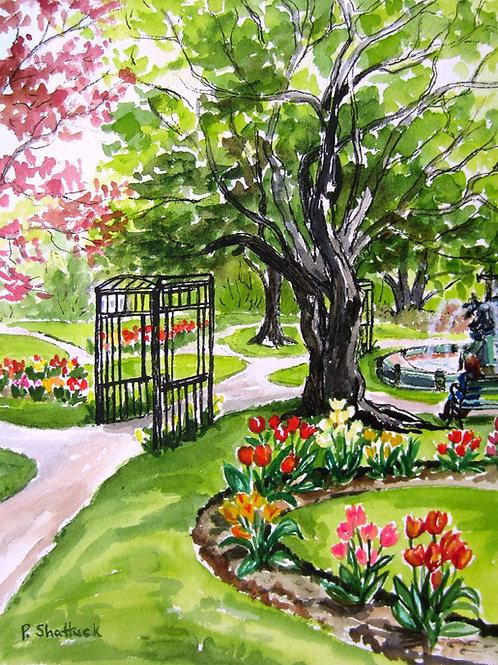 Spring Harmony- Original Painting | Pat Shattuck