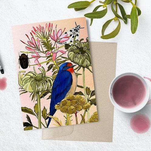 Moth, Beetle, Bird Card | Briana Corr Scott