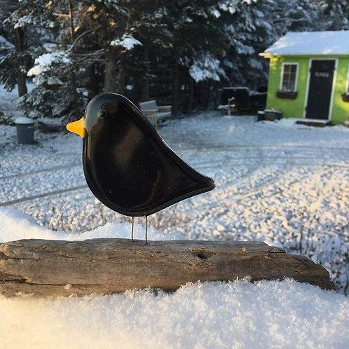 Standing Black Bird   The Glass Bakery