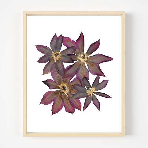 Pressed Flower Print #9   Oake Living