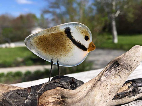 Standing Plover | The Glass Bakery