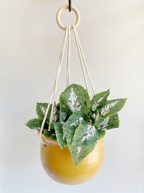 Yellow Hanging Planter | Anderson Pottery