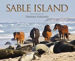 sableislandbook.jpg