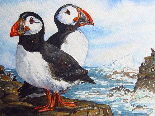 A Puffin's World - Original Painting   Pat Shattuck