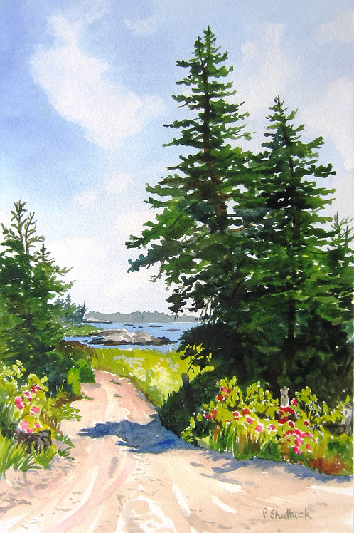 The Beach Road | Pat Shattuck