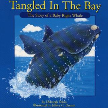 Tangled in the Bay | Nimbus Publishing