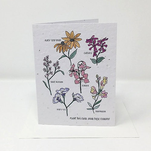 Wildflower Seed Card | Jill + Jack Paper