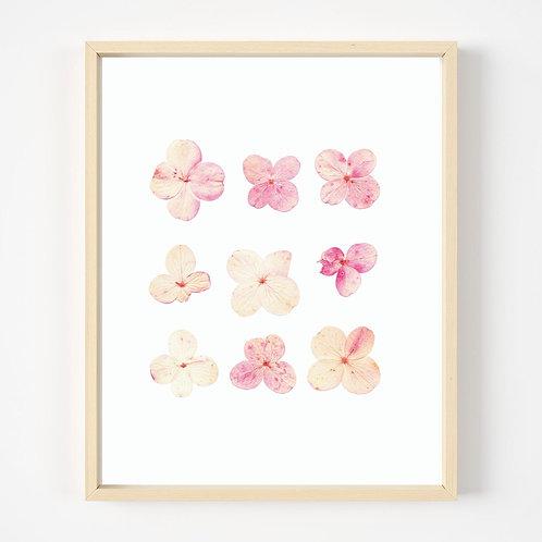 Pressed Flower Print #2 | Oake Living
