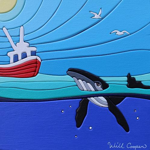 Ocean Life | Will Cooper