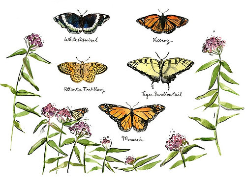 Butterflies | 8x10 | Kat Frick Miller